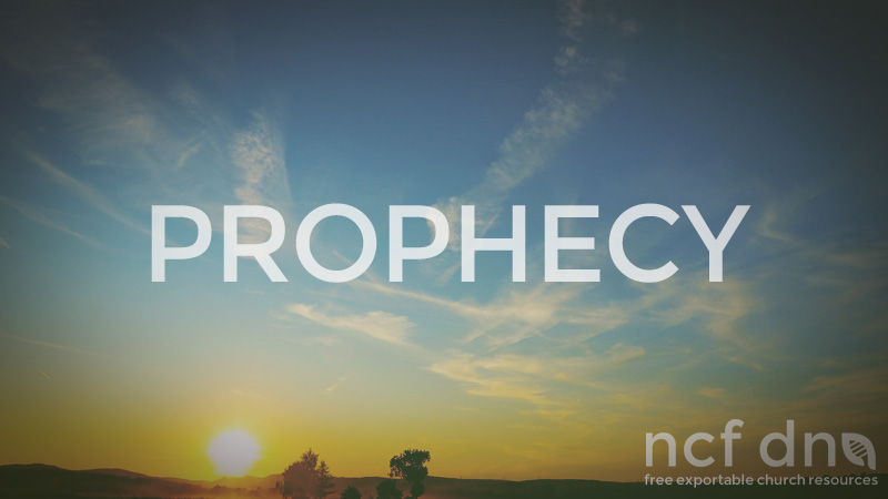NCF DNA Standard Portfolio Feature PROPHECY